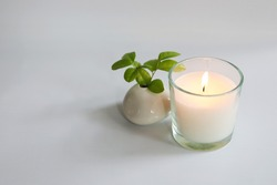 white candle glass cup with green leaves on black background