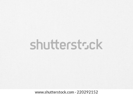 White canvas background texture  #220292152