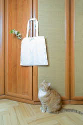 White canvas bag with cherry blossoms hanging on the door handle and Ginger cat looking up, copy space, selective focus. High quality photo