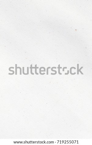 White canvas texture background - Shutterstock ID 719255071