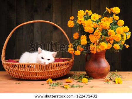 White cat playing with flowers