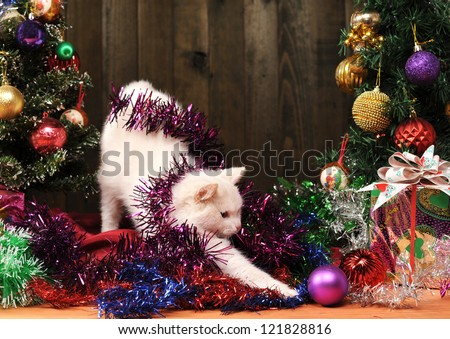 White cat playing with the Christmas tree decorations