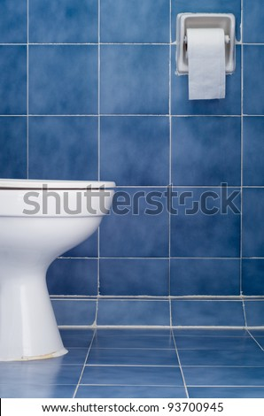 White ceramic sanitary ware and tissues in Blue bathroom
