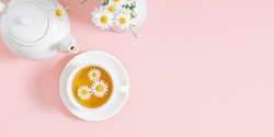 White chamomiles, cup and teapot on pastel pink background. Herbal tea of chamomile flower. Chamomile tea concept. Flat lay, top view, copy space