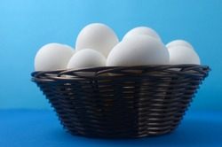white chicken eggs in a brown basket on a blue background copyspace
