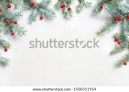 White Christmas background with Christmas tree branches and red berries, winter festive composition with copy space