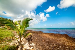 White clouds over Autre Bord beach in Le Moule, Guadeloupe. Guadeloupe is a archipelago of French West Indies in Lesser Antilles, Caribbean sea