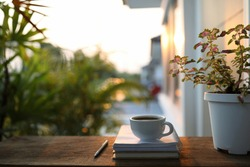 white coffee cup and Coleus plant on wooden table