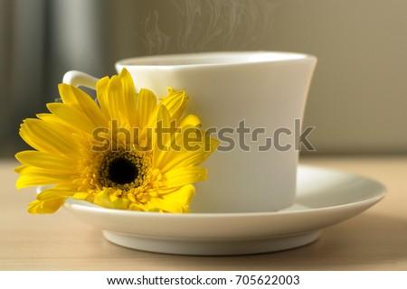 Free Photos Good Morning Monday Yellow Flowers Background Avopix