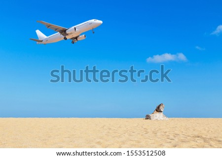 White commercial Airplane landing above tropical beach with blue sky in sunny day travel destinations concept. #1553512508