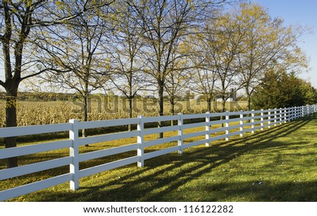 White country fence against field of corn