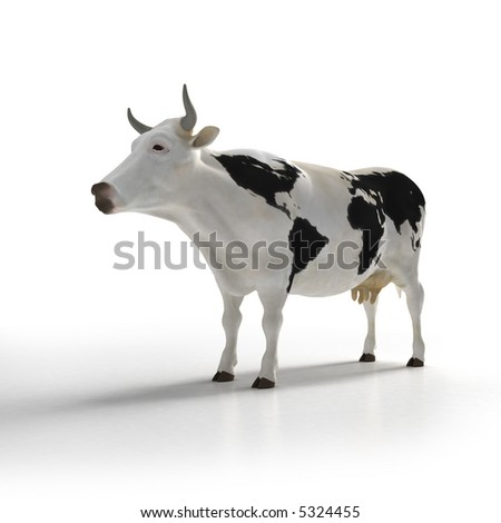 White cow with black patters in the skin shaped like a world map