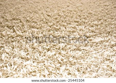 White/Cream colored shag carpet 1