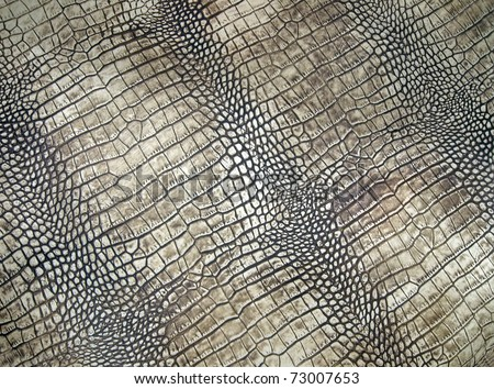 white crocodile skin pattern, abstract danger texture closeup.