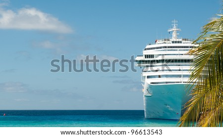 white cruise ship and palm tree
