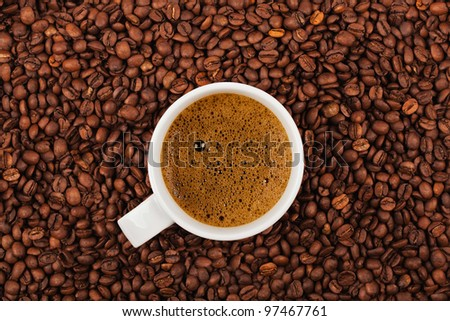 White cup full of coffee placed on coffee crops