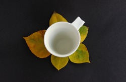 white cup on autumn leaf with black background top view