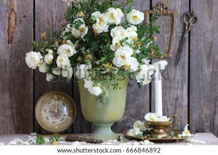 white dog roses in vintage...