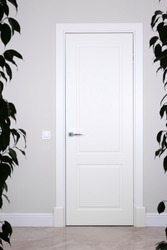 White door and switch on a light gray wall. The bright elements of the interior. The dark outline of house plants on the edges