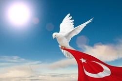 White Dove holding Turkey flag Flying on blue sky to independence and freedom concept