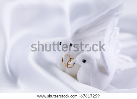 stock photo White doves with wedding rings