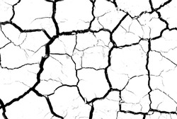 White dried and cracked ground earth background. Closeup of dry fissure ground. erosion