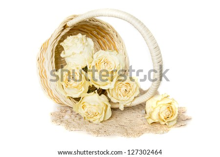 White dried roses in basket with knitted doily isolated on white background.