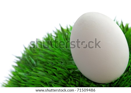 White  easter egg on green grass