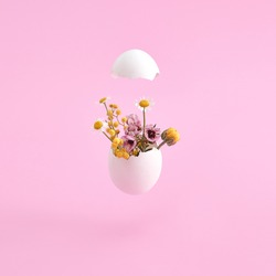 White egg and spring flowers. Easter minimal on pink background. Happy easter, spring or summer, food concept