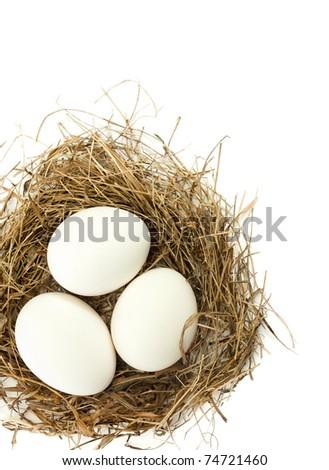 White egg in the nest, the white background