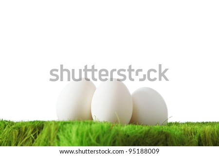 White eggs on green grass with white isolated background - stock photo