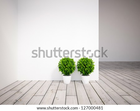 white empty interior with two plants
