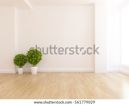 White empty room with plant. Living room interior. Scandinavian interior design. 3d illustration