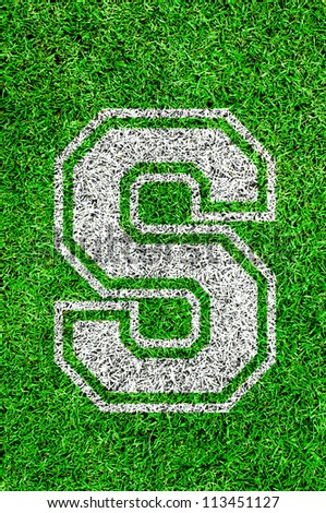 White english alphabet S on green grass