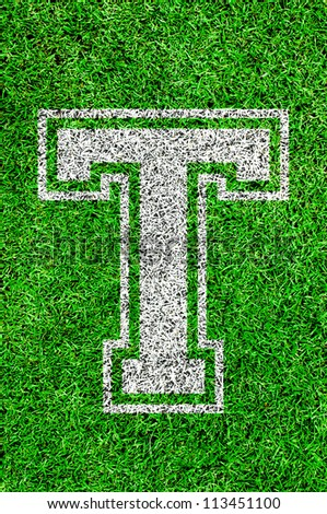 White english alphabet T on green grass