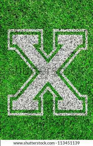 White english alphabet  X on green grass