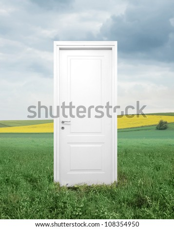 White entrance door on a green meadow