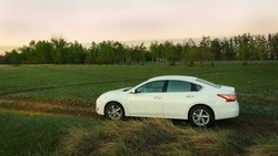 white family sedan in nature on field with grass