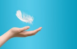 White feather falling to female hand on blue background. Concept of lightness easing and cleanliness.