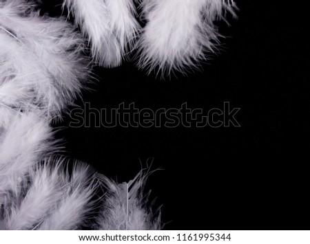 White feathers forming a frame on a black background (as the good and evil or black and white concept), copy space for your text #1161995344