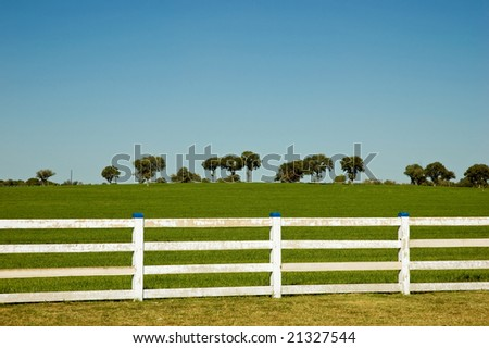 White fence encloses green field with trees on the horizon