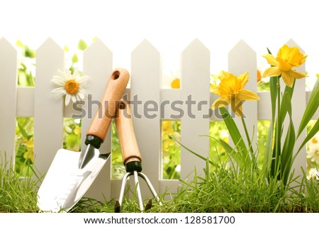 White fence with garden tools green grass and daffodil flowers