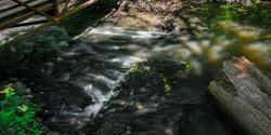 White Flow - a long exposure photograph via drone of water in the stream flowing under a bridge in the summer in Beavercreek Wetlands in Beavercreek, Ohio.