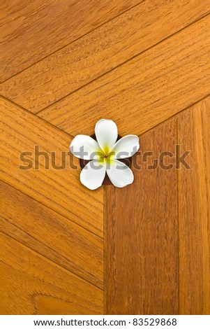 white flower and teak texture background