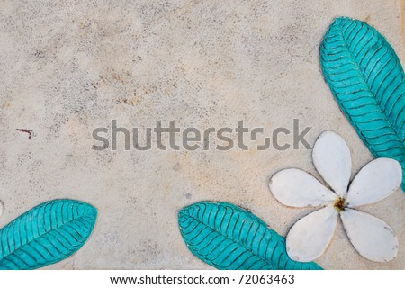 White flower on a wall. Texture background