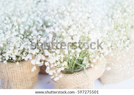 Free beautiful flowers flower white flowers 58852 stock photo white flowers 597275501 mightylinksfo