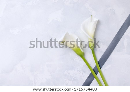 White flowers callas with mourning ribbon on a concrete background. Copy space. The concept of mourning and sorrow ストックフォト ©