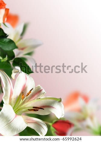 white flowers lily with green leaf and red rose on pink background
