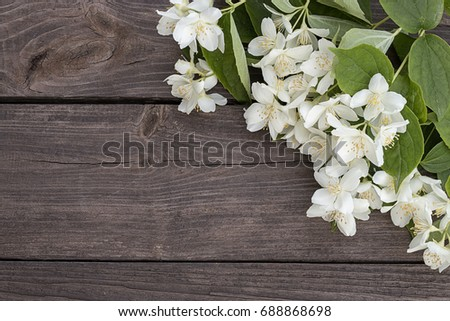 Free white flowers on brown tree branch 36735 stock photo avopix white flowers of jasmine on brown old wooden background space for text 688868698 mightylinksfo