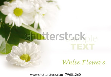white flowers on background white